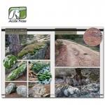 52_LandscapesofWar1_ESP