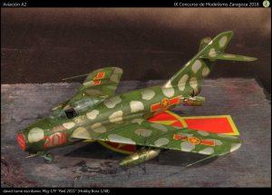 110-f-aircraft-A2-p55-1-img-6099-4302x3088-1600x1148