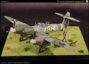 110-f-aircraft-A2-p80-2-img-5919-4302x3088-1600x1148